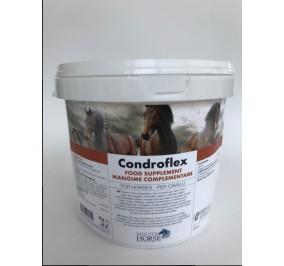 CONDROFLEX KG 3